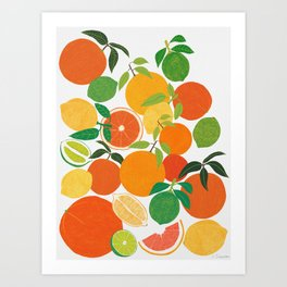 Citrus Harvest Art Print