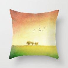 3. Throw Pillow