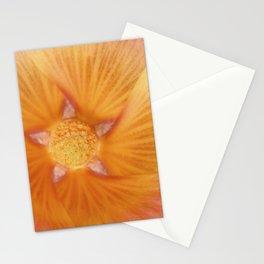 Pretty Holly Stationery Cards