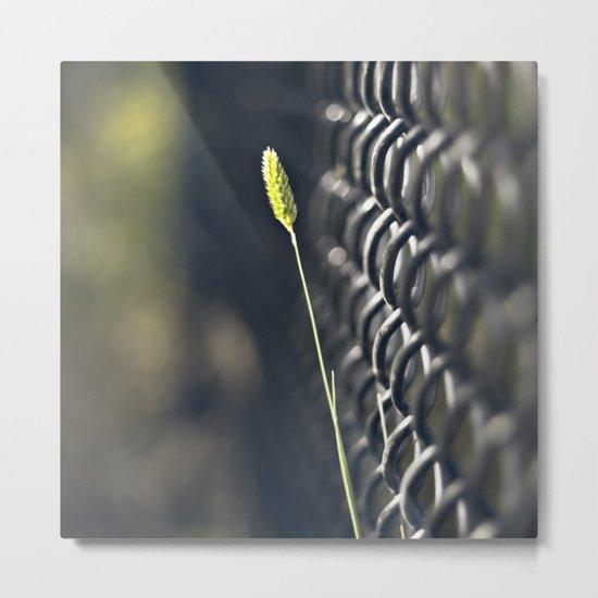 Twig & Fence Metal Print