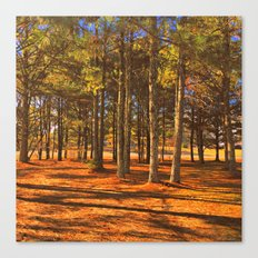 Falling for Alabama Canvas Print