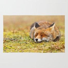 Comfortably Fox (red fox sleeping) Rug