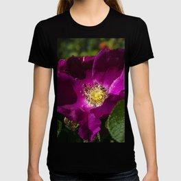 Rosa rugosa T-shirt