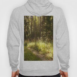 Forest Path Sunny Day #decor #society6 Hoody