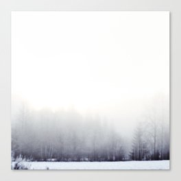 Foggy winter day Canvas Print
