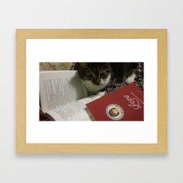 Caleb the cat Framed Art Print