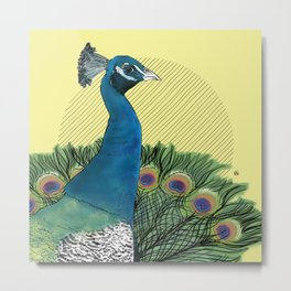 FEATHER FEST - PEACOCK (PLUMAGES - PAON) Metal Print