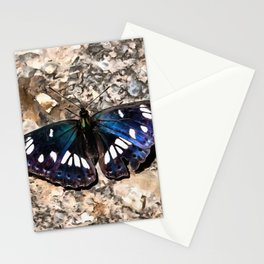 Southern White Admiral On Stone Butterfly Portrait Stationery Cards