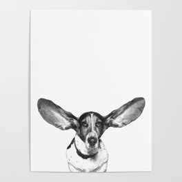 Black and White Dog Ears Poster