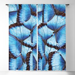Blue Morpho Butterfly Blackout Curtain