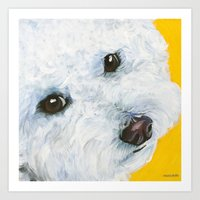 blair waldorf Art Prints featuring Blair the Bichon Frise by Melissa Smith Pet Art