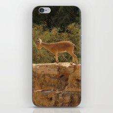 Yael iPhone & iPod Skin