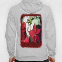 Mixed Color Poinsettias 2 Blank P5F0 Hoody
