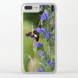 Summer in Shenandoah Clear iPhone Case