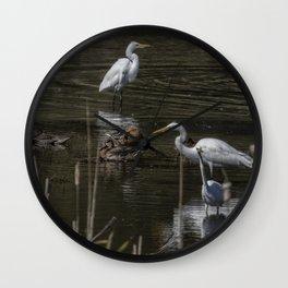 Three Great Egrets Among the Ducks, No. 2 Wall Clock