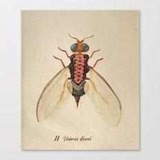 urban Bug #2 Canvas Print