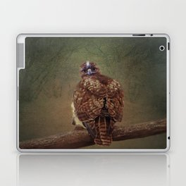 Young Red Tail Hawk Laptop & iPad Skin