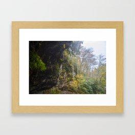 Rainforest like #2 Framed Art Print