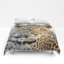Female leopard in Namibia, Africa Comforters