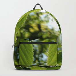Sunlight Canopy III Backpack