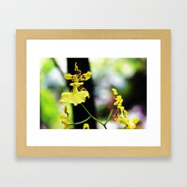 Hadas en el jardín Framed Art Print