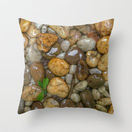 Top View of wet rock backgrounds in the tropical garden in 4:3 Ratio. Throw Pillow