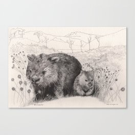 Path to wombat pool Canvas Print