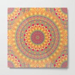 Mandala 257 Metal Print