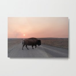 Sunset Buffalo  Metal Print