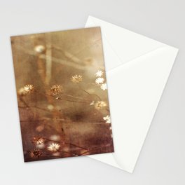 Dry Fall Stationery Cards