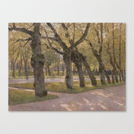 Autumn lime-trees. Pavlovsk. Canvas Print