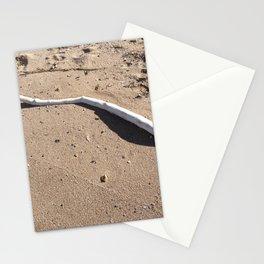 Splender of still life Stationery Cards