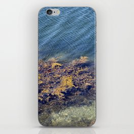Aquatic iPhone Skin