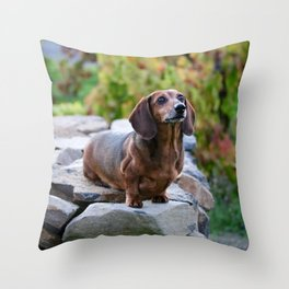 Autumn Dachshund Throw Pillow
