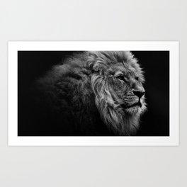 Black Print Lion Art Print