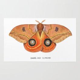 Randa's Eyed Silkmoth (Automeris randa) Rug