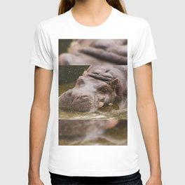Huge bored Hippopotamus T-shirt