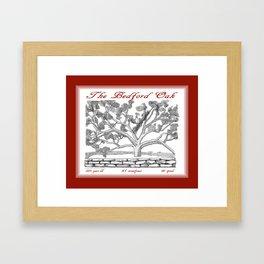 The Bedford Oak Zentangle Illustration Framed Art Print