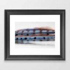 Blue Jay Wave Framed Art Print
