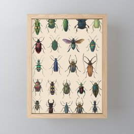 Insects, flies, ants, bugs Framed Mini Art Print