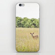little dear iPhone & iPod Skin