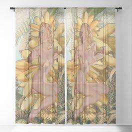 Banana Republic Sheer Curtain
