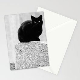 Black cats in a Cemetery Stationery Cards