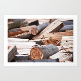 Wood, Madera Art Print