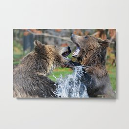 Grizzly Wild Nature Metal Print