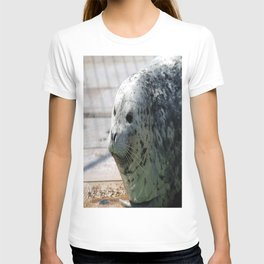 Leopard seal T-shirt