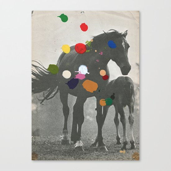 PONY Canvas Print