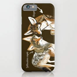 Coyotes in love iPhone Case