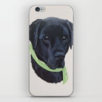 flash iPhone & iPod Skins featuring Flash by Ginny M