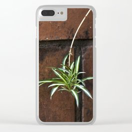 mala madre Clear iPhone Case